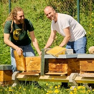Die beiden Imker von Bienesto - Christian Schmid und Uwe Bentner bei der Arbeit an den Bienenkästen.