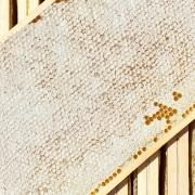 Ganze, verdeckelte Honigwabe zum Essen im Holzrähmchen